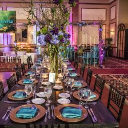 bat-mitzvah-theme-decorations-bnai-torah-boca-raton-florida-dalsimer-atlas