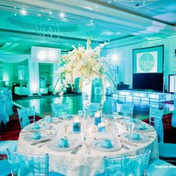 mitzvah-theme-decorations-bat-mitzvah-renaissance-hotel-fort-lauderdale-plantation-florida-dalsimer-atlas