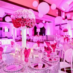 Bat Mitzvah Levine 032115 Featured