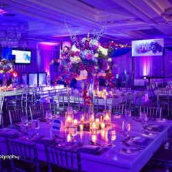 mitzvah-theme-decorations-bat-mitzvah-woodfield-country-club-boca-raton-florida-dalsimer-atlas
