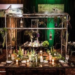 mitzvah-theme-decorations-bar-mitzvah-temple-beth-emet-cooper-city-florida-dalsimer-atlas