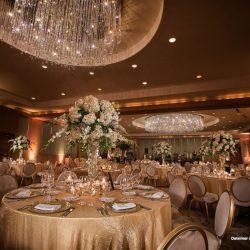 Ritz-Carlton-Fort-Lauderdale-Fort-Lauderdale-florida-dalsimer-atlas
